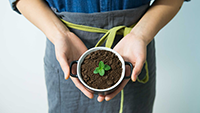 200 x 113 How to grow your restaurant in the first 12 mos