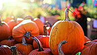 Getting your business ready for halloween_200x113