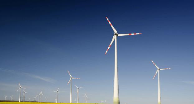 green-initiatives-750x403