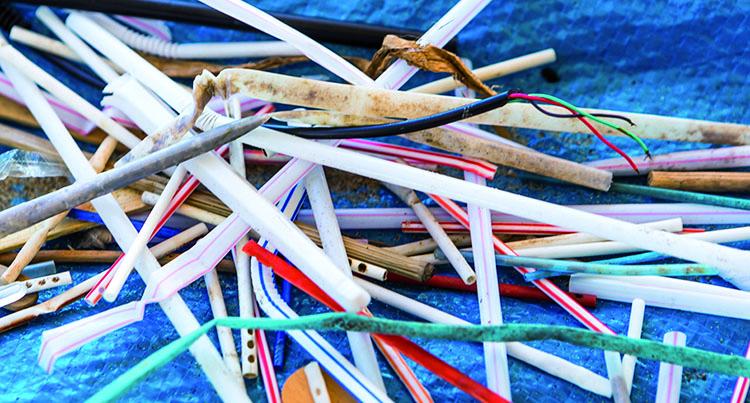 War_on_straws_banner